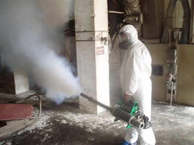 Как происходит травля клопов специальным дымом