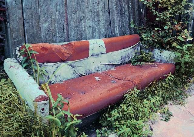Старый диван где размножаются клопы
