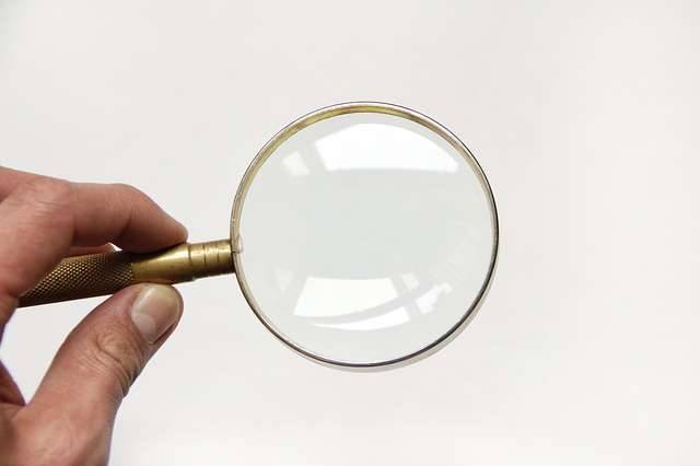 Домашние клопы как обнаружить, Сайт полезных советов