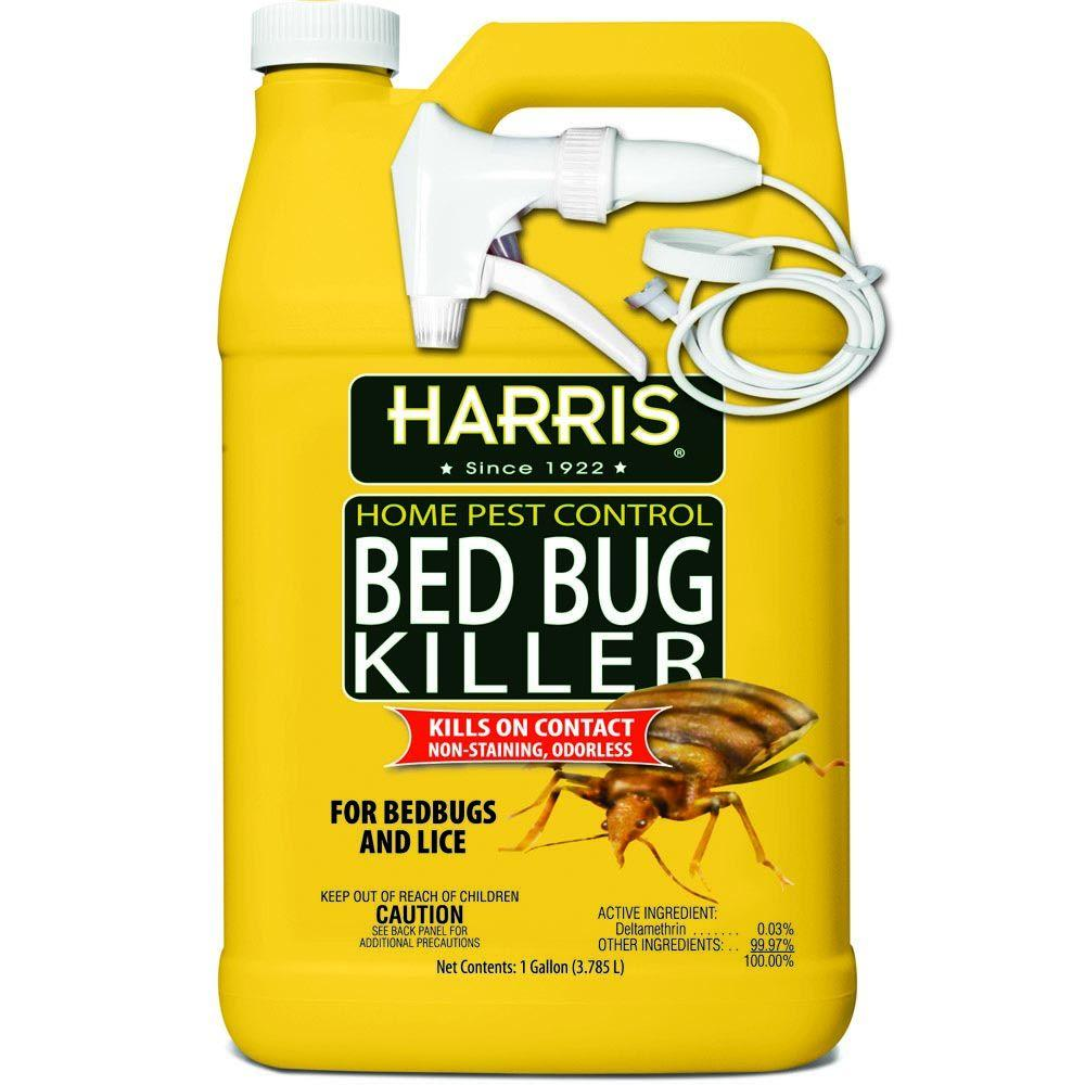 Bed Bugs Killer Pro